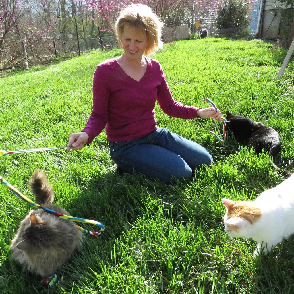 Kristi & Cats
